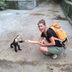 feeding wild monkeys