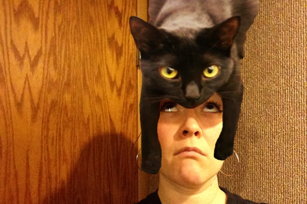 Cat on your head
